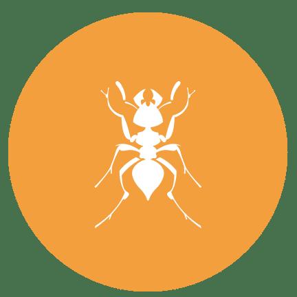 Ant icon circle