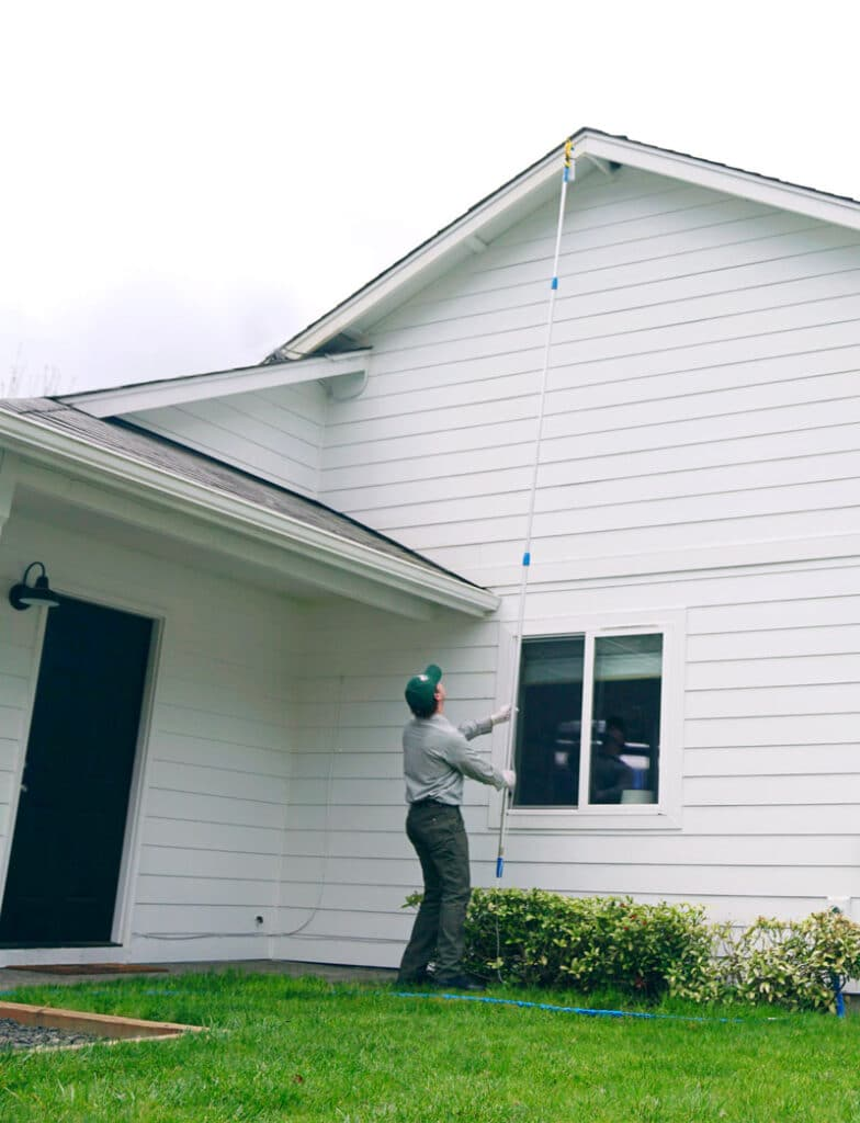Sunrise Pest Management | Bees and Wasps
