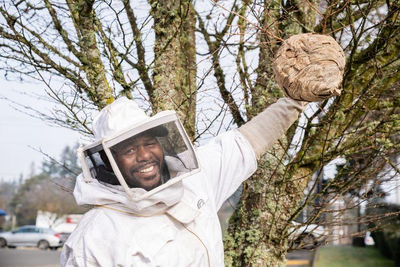 Sunrise Pest Management | Bee Hive