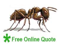 Sunrise Pest Management | Moisture Ants